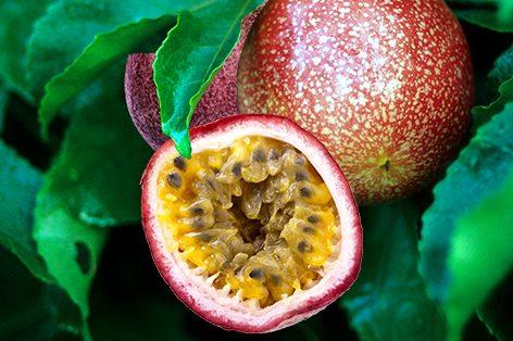 Freeze passionfruit?