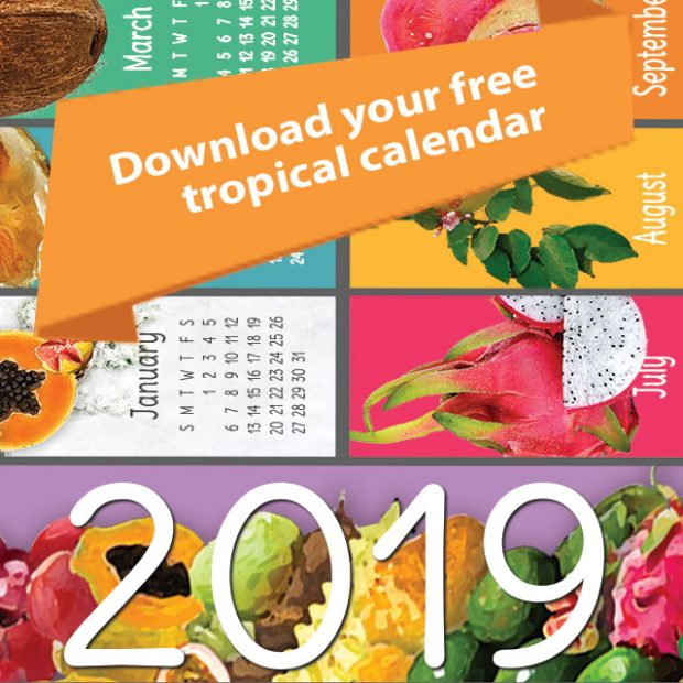 2019 calendar, yours for the download