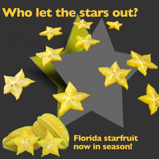 Who let the stars out!