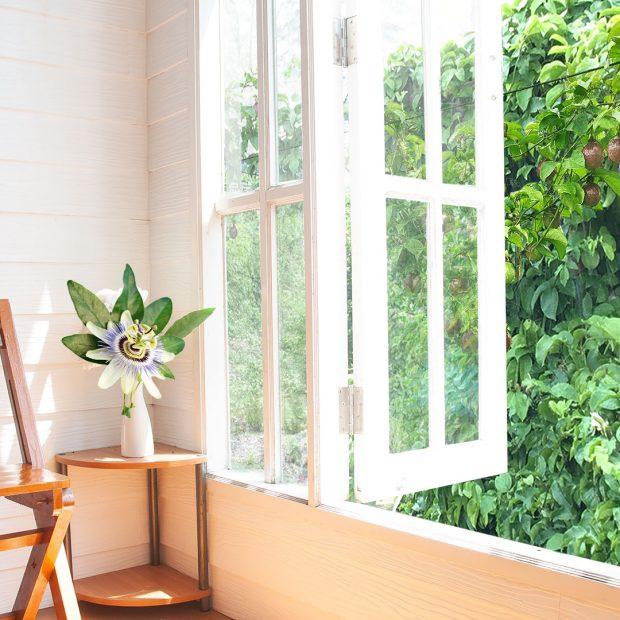 Passionfruit porch