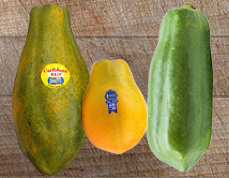 Know ur papayas
