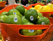 Pick a lime, pick a great lime
