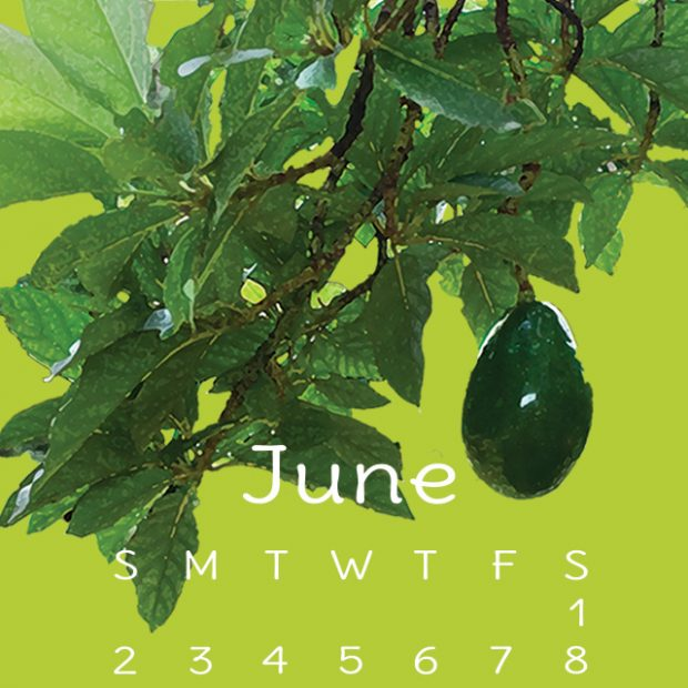 Free tropic fruit calendar