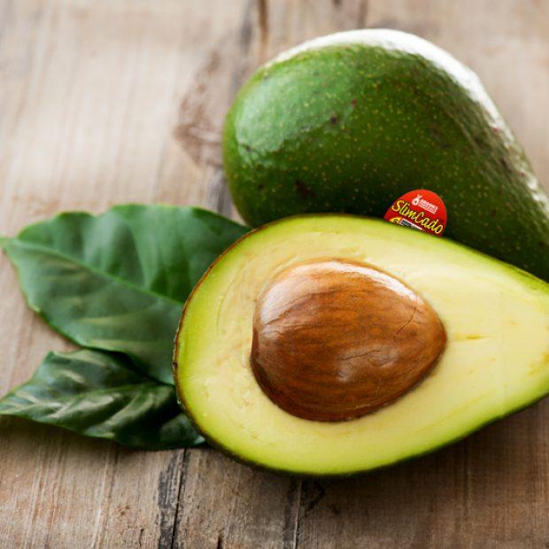 SlimCado, the Florida avocado