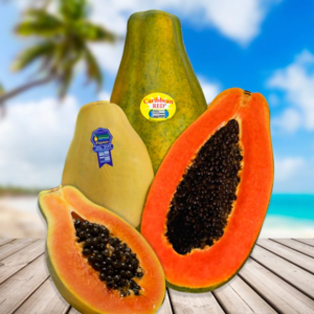 Our papayas are not involved in CDC alert