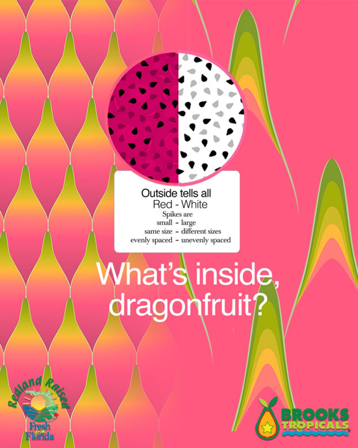 What's inside, dragonfruit?