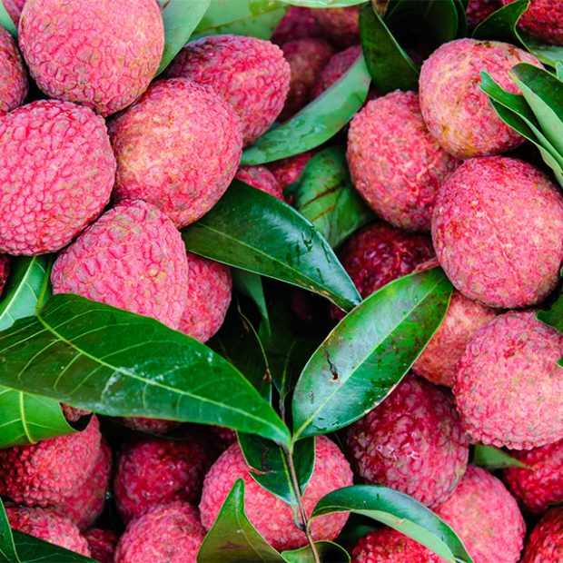 Opening lychees