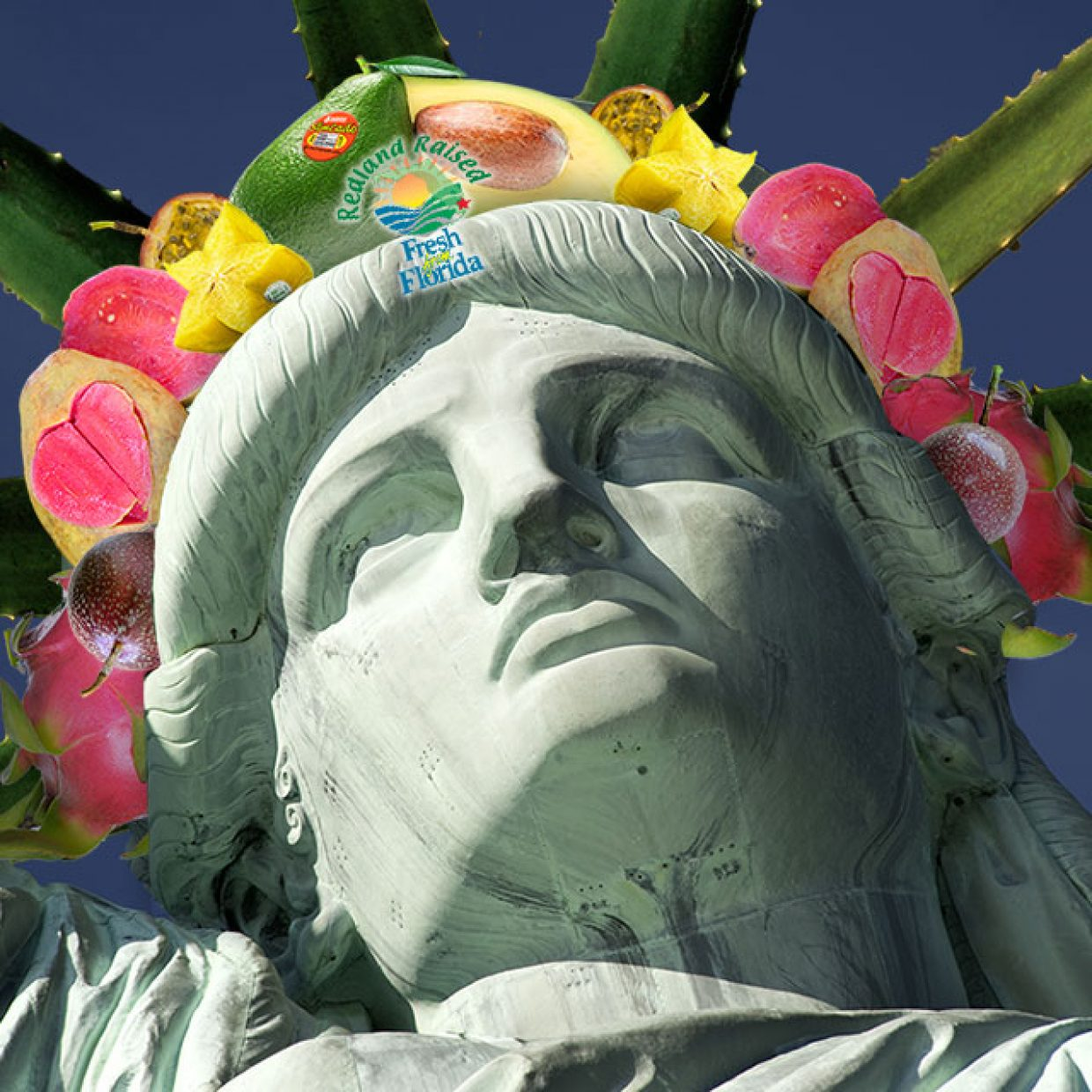 Statue of tropicals grown in the USA