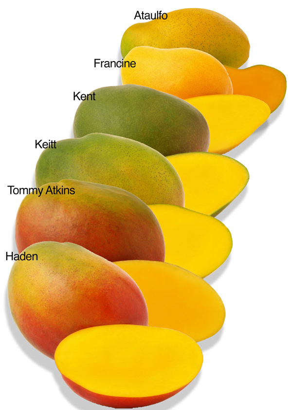 Just a small selection of mango varieties