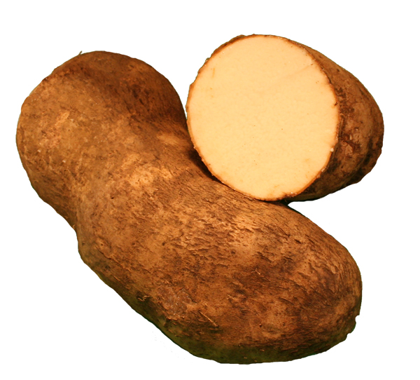 The real yam
