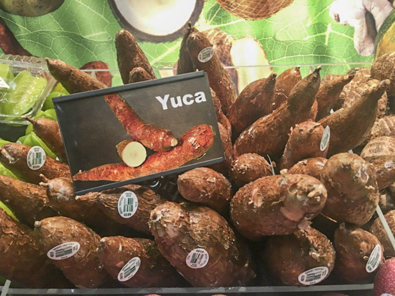 yuca on display