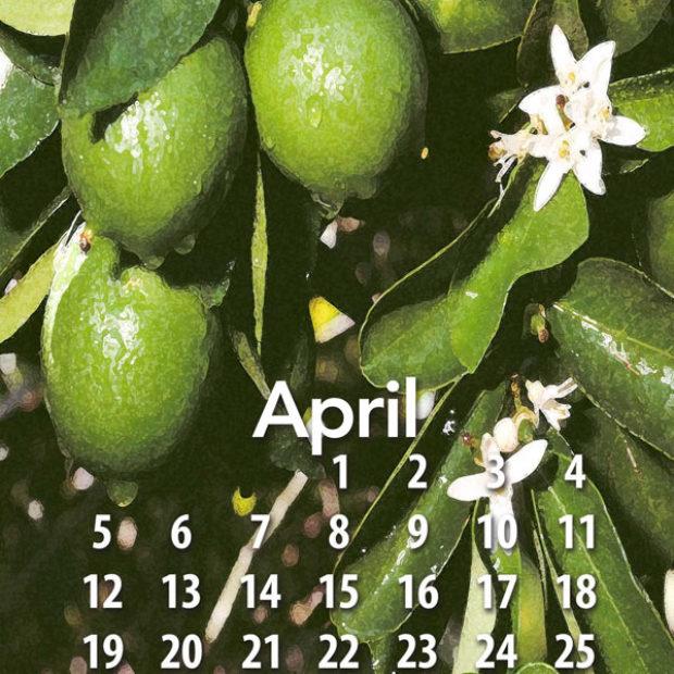 Free tropical fruit calendar