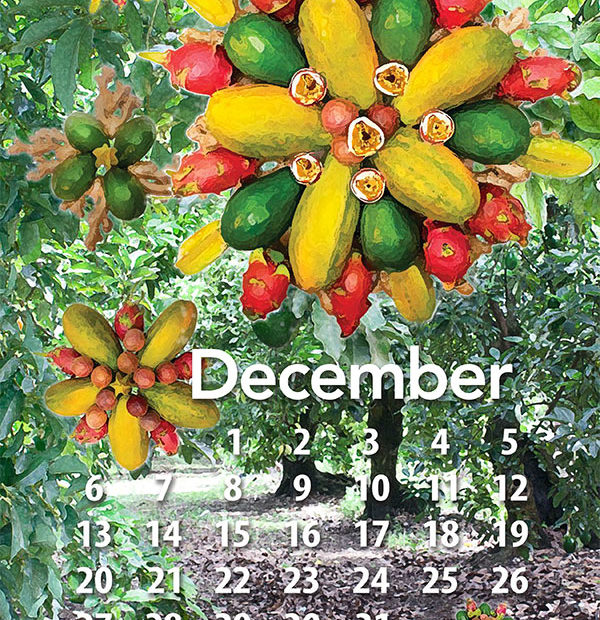 Free tropical fruit calendar