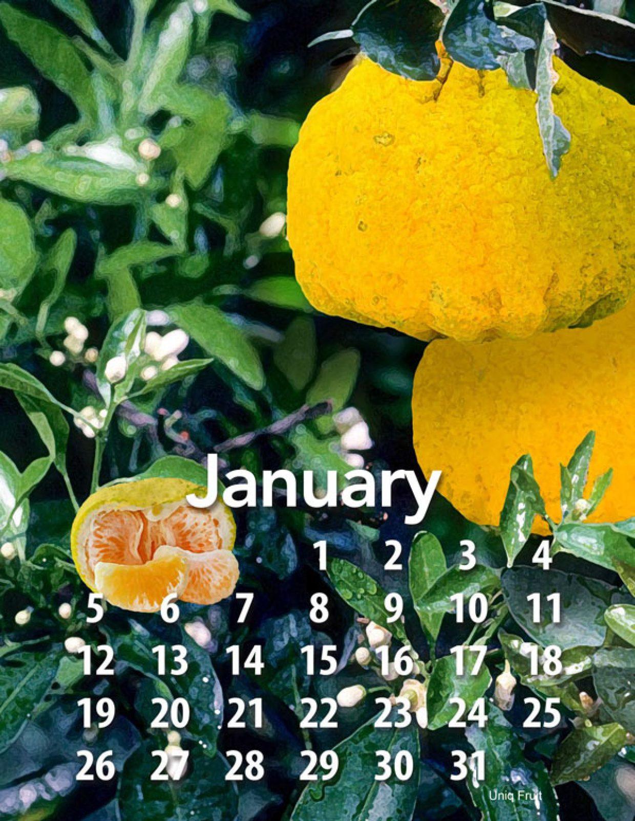 2020 Tropical Fruit calendar