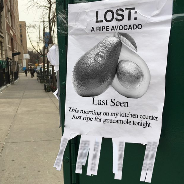 Avocado gone missing?