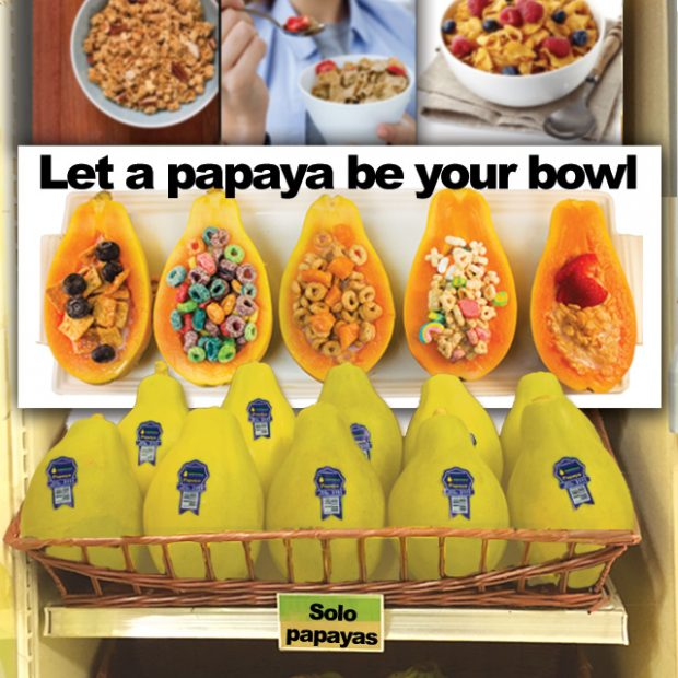 Day 28 – 30 ways in 30 days Solo papaya