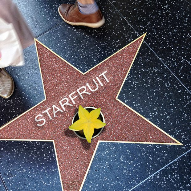 On the Walk of Fame
