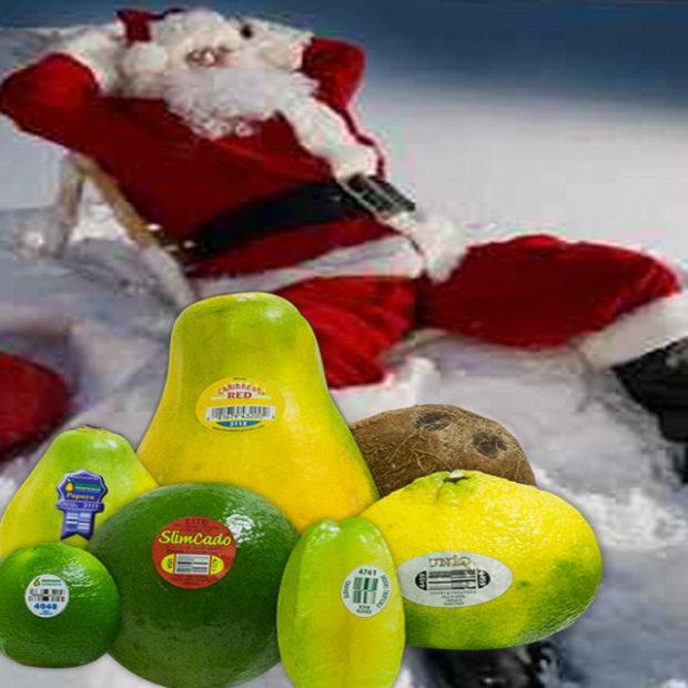 What Santa brings back from his trip