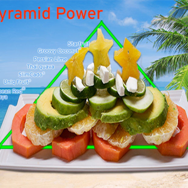 Tropical food pyramid