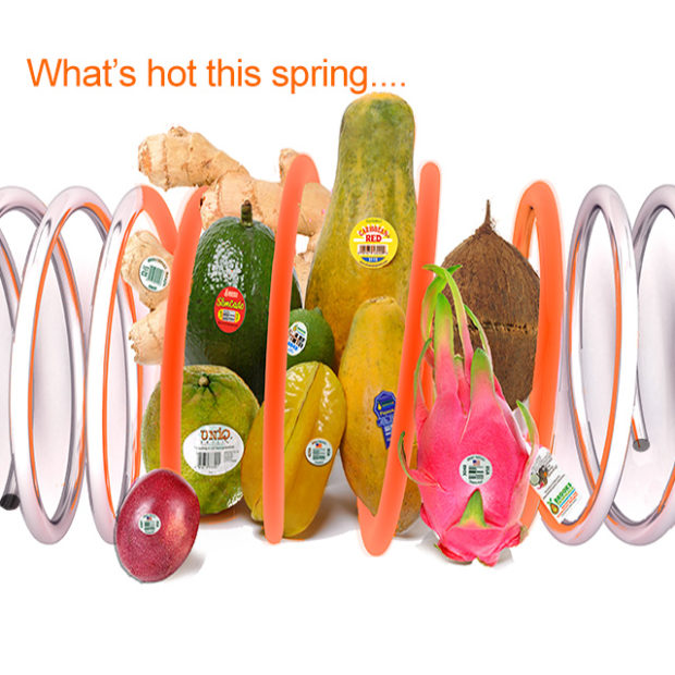 What's hot this spring?