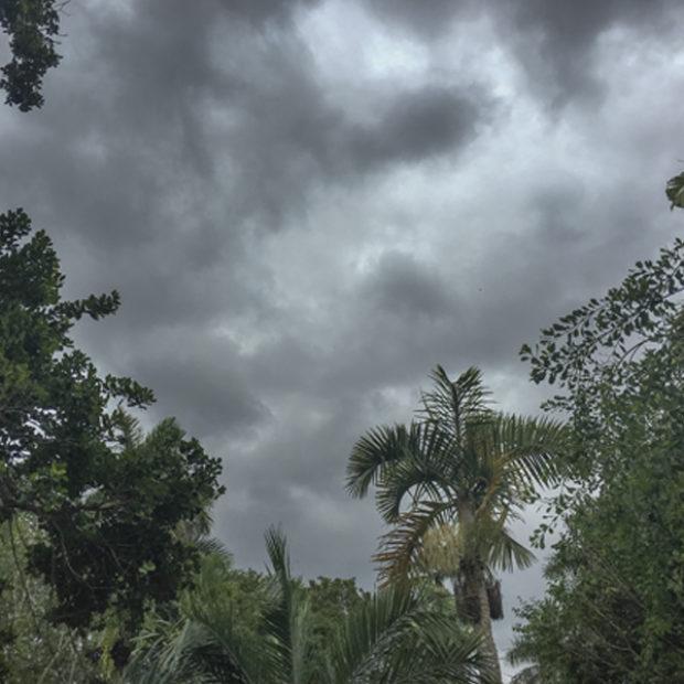 Tropical rains