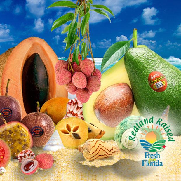 Florida tropicals