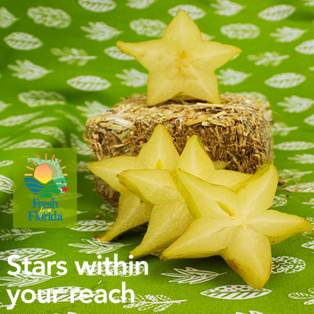 Stars within in your reach