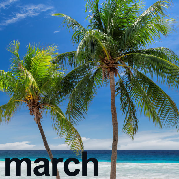 March's calendar highlights coconuts